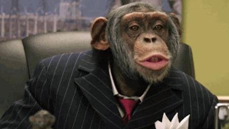 chimpPolitician