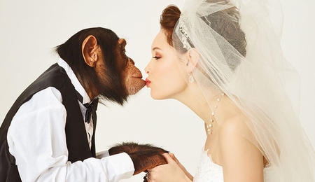 monkey-bride