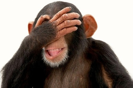 Chimpanzee with Hand Over Eyes --- Image by © Bob Elsdale/Corbis